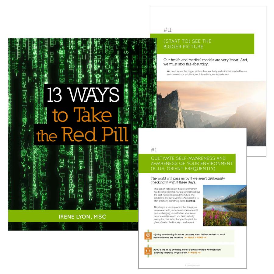 PDF_13Ways
